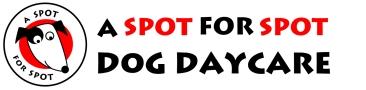 A Spot for Spot Dog Daycare